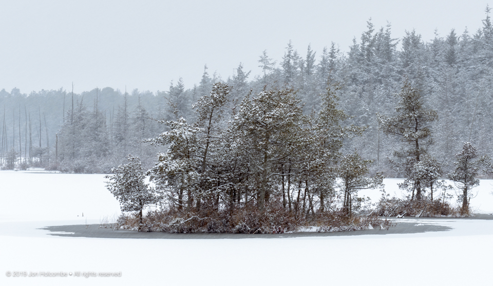 2019-01-13_snow_day.jpg