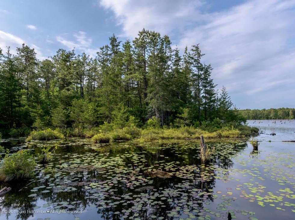 2019-05-25_lake.jpg