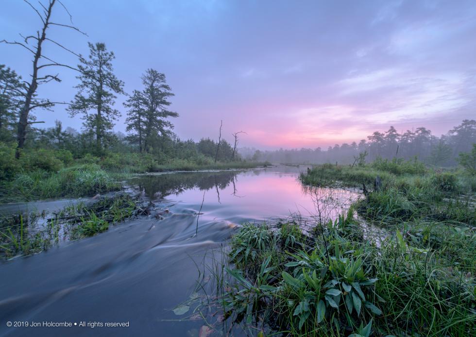 2019-05-30_pink_fog.jpg