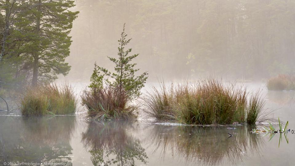 2019-11-19_still_pond.jpg
