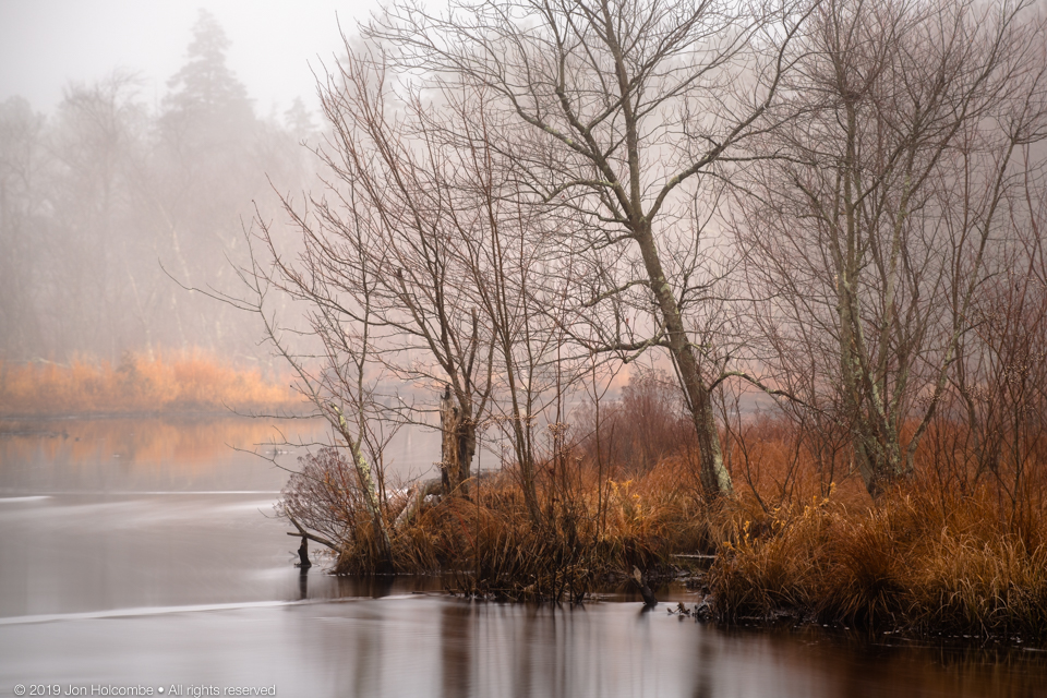 2020-02-01_winter_mist.jpg