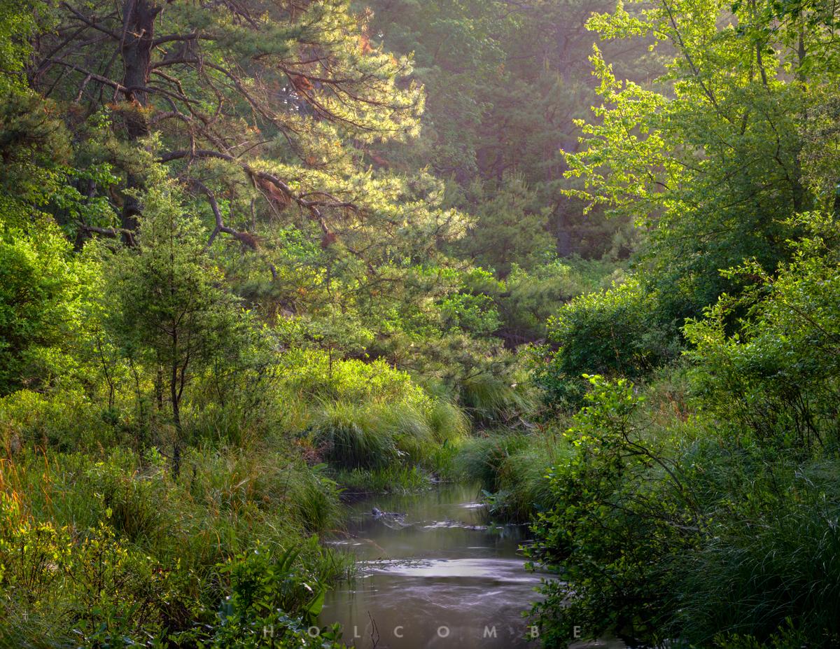2020-06-06_upstream.jpg