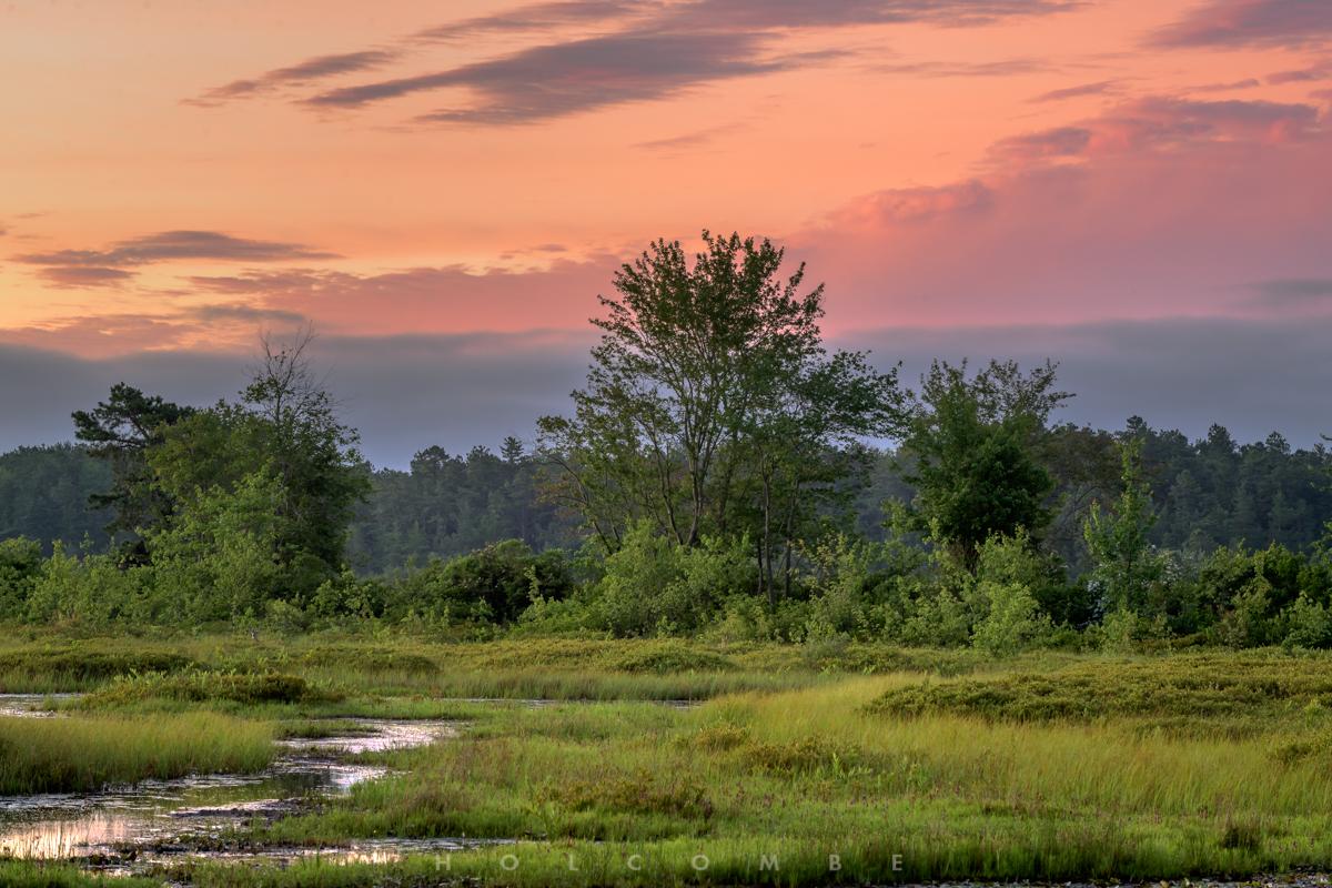 2020-06-17_marsh_sunrise.jpg