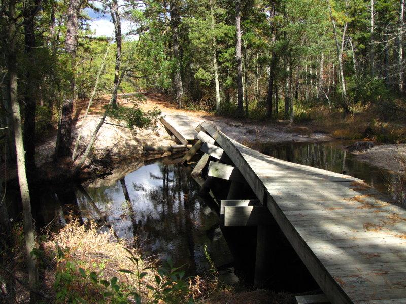 bridge-2010.jpg