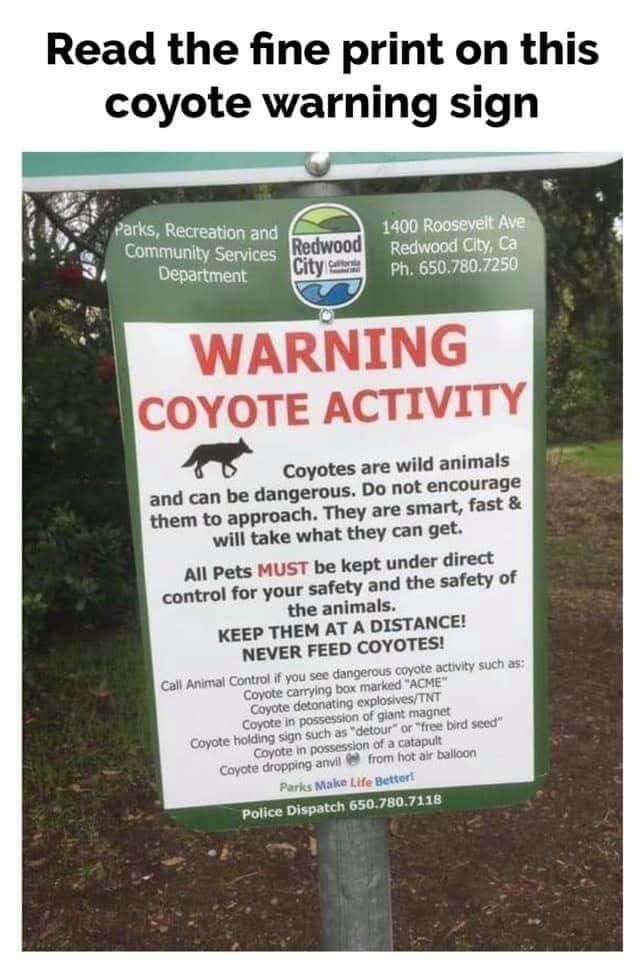 Coyote Warning.jpg