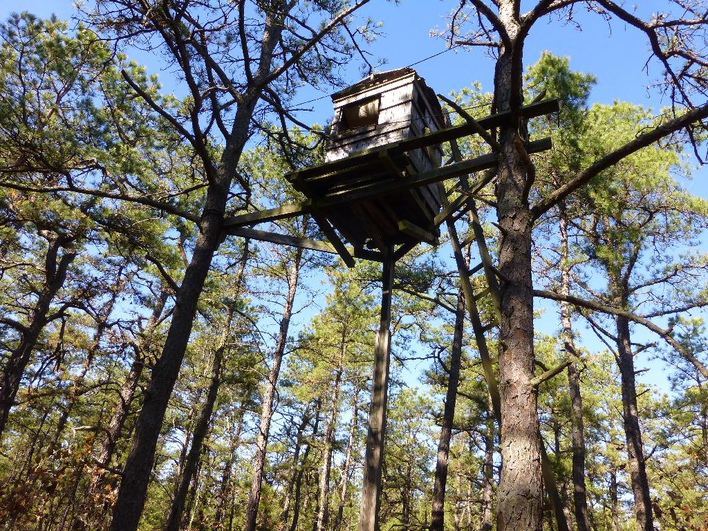 In The Midwest Hunt Is On For Elaborate Deer Stands