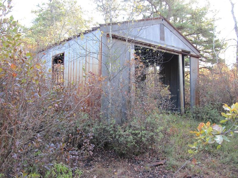 Pinelands-2010 Fall 114.jpg
