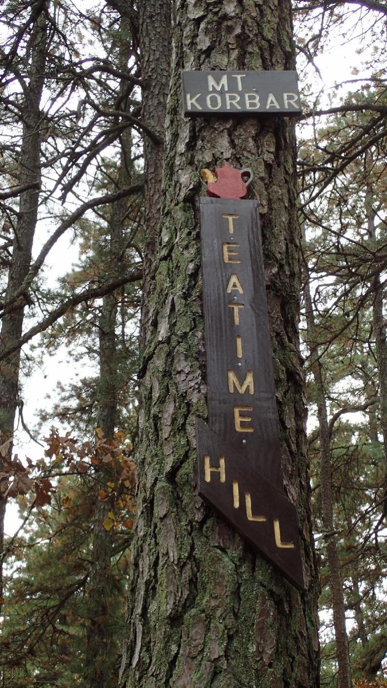 TeaTime Hills.jpg